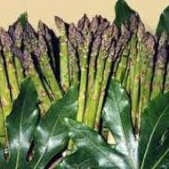 Immagine ricetta Riso freddo con gamberi e asparagi